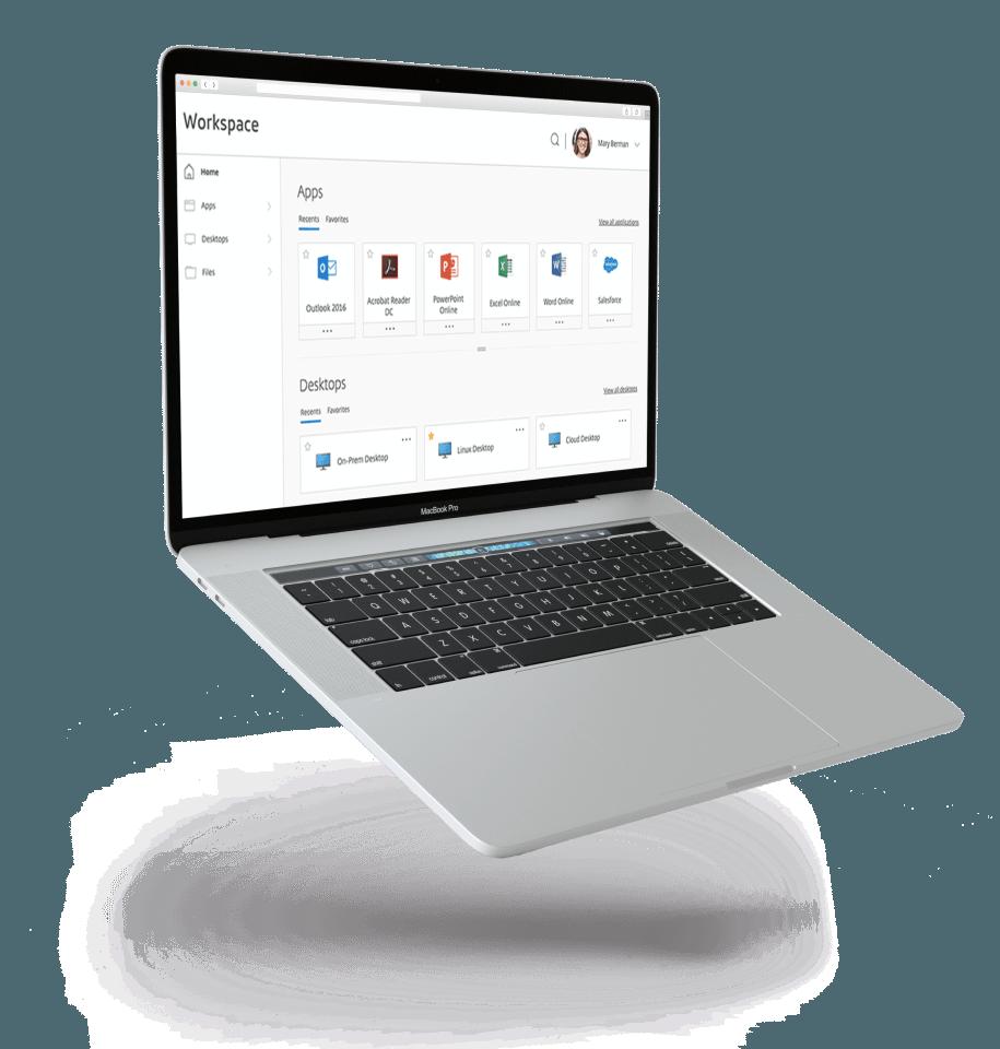 Citrix Virtual Apps and Desktops Services – SaaS